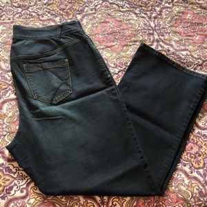 Lane Bryant Tighter Tummy Technology Bootcut Jeans